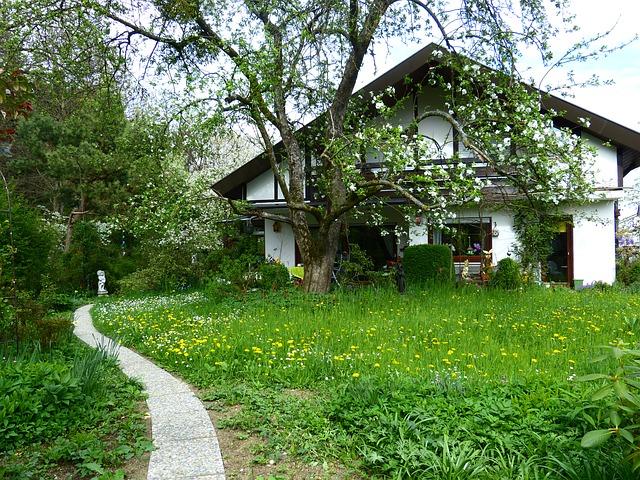 bílý dům v přírodě ovocný strom